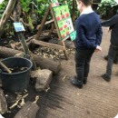 C4 trip to The Living Rainforest